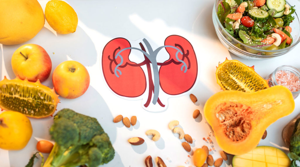 healthy kidneys illustration on a table with fruits and vegetables